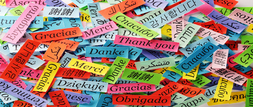 Thank You Word Cloud printed on colorful  paper different languages